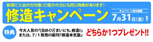Campaign_20150731
