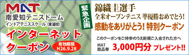 web_coupon(20140928)