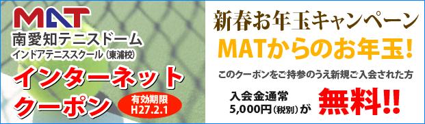 web_coupon(20150201)